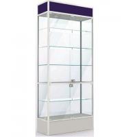 Стеклянная витрина Vz-1.1
