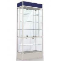 Стеклянная витрина Vz-1.3